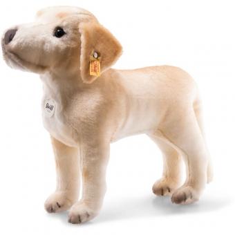 Steiff 083471 Kristopher Labrador, Plüsch, 32 cm, beige