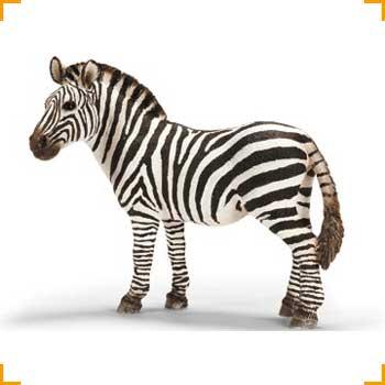 Schleich Zebra, Stute
